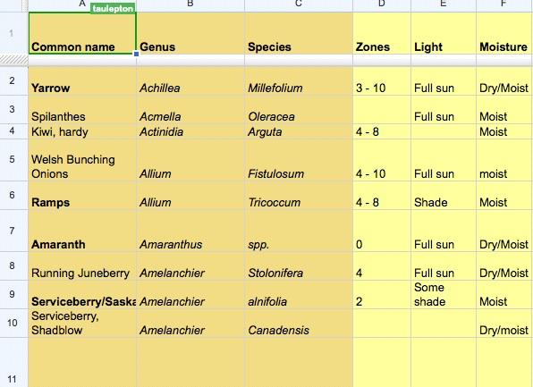 Forestgarden screenshot